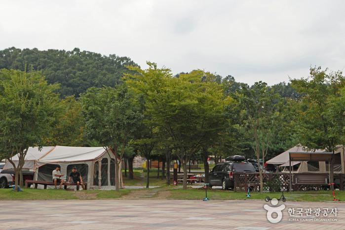 호수 옆 넉넉하고 호젓한 가족 힐링 명소, 대전 대청호로하스캠핑장